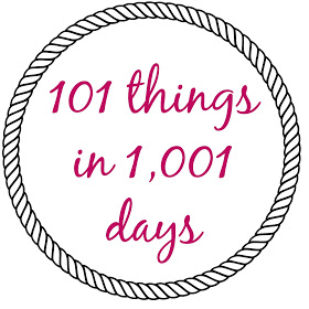101 things in 1,001 days
